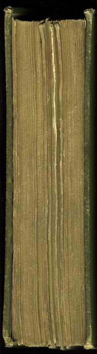 """Fore Edge of the [1885] Ward, Lock & Co. """"Home Treasure Library Complete ed."""" Reprint, Version 1"""