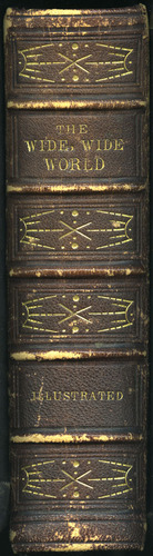 "Spine of Volume 1 of the 1853 G.P. Putnam & Co. ""Illustrated Edition"" Reprint"
