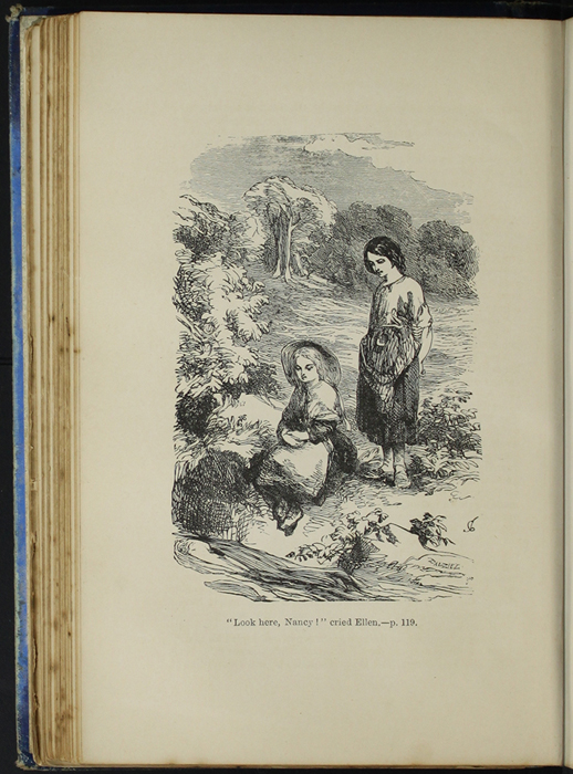 Illustration on Page 118b of the [1890] Frederick Warne & Co. Reprint Depicting Ellen and Nancy at the Brook