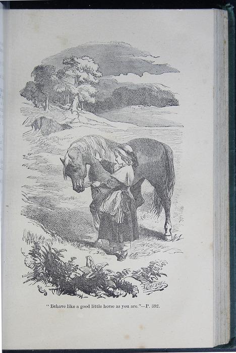8DESWarne_[1884]_392B_ed_web