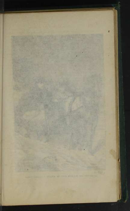 Recto of Tissue Preceding Illustration on Page 314a of the [1879] Milner & Sowerby Reprint