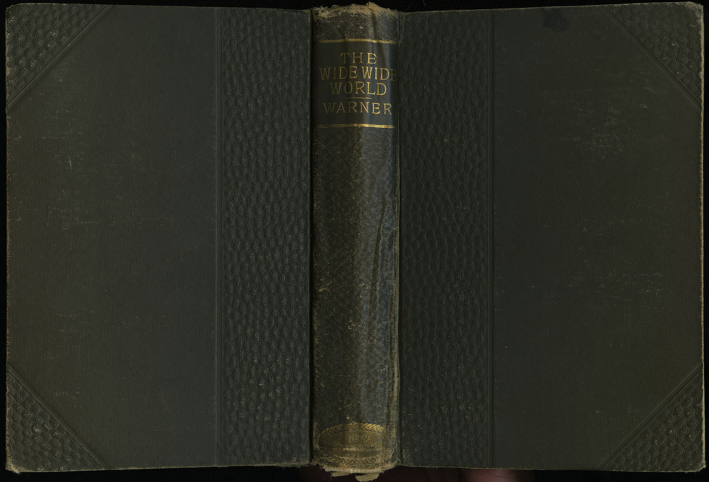 "Full Cover of the [1895] William L. Allison Co. ""Allison's New Standard Library"" Reprint"