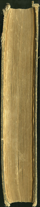 "Fore Edge of the [1894] William L. Allison Co. ""Allison's Standard Library"" Reprint"