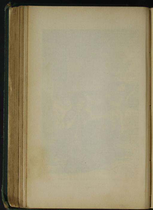 Verso of Blank Page Succeeding Illustration on Page 122d of [1879] Milner & Sowerby Reprint