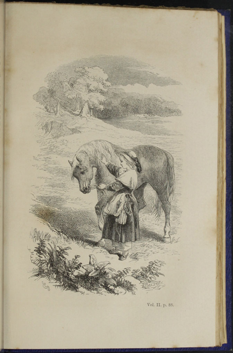 "Illustration on Page 88a of Volume 2 of the 1853 James Nisbet, Hamilton, Adams & Co. ""New Edition"" Reprint Depicting Ellen and The Brownie"