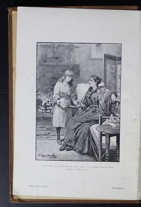 Frontispiece to the [1896] The Walter Scott Publishing Co. Ltd. Reprint