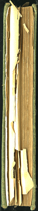 Fore Edge of the [1904] S. W. Partridge & Co. Reprint
