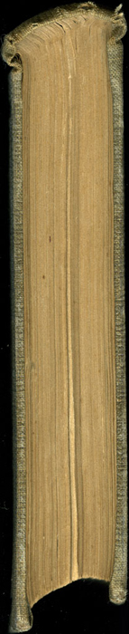 Head of Volume 2 of the 1851 George P. Putnam First Edition<br /><br />