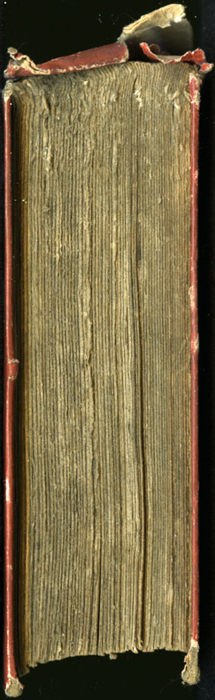 """Head of the 1853 T. Nelson & Sons """"Nelson's Library for Travellers and the Fireside"""" Reprint"""