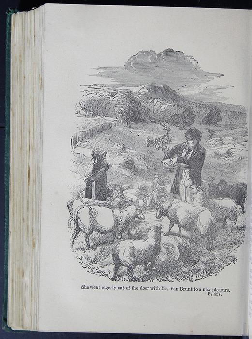 8DESWarne_[1884]_427B_ed_web