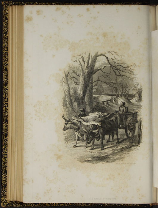 "Illustration on Page 114c of Volume 1 of the 1853 G.P. Putnam & Co. ""Illustrated Edition"" Reprint Depicting Ellen Riding in the Ox Cart"