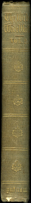 Spine of Volume 2 of the 1851 George P. Putnam First Edition<br /><br /> <br /><br />