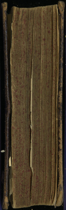 Fore Edge of the [1874] William Nicholson & Sons, S.D. Ewins & Co. Reprint