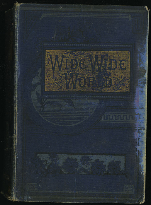 Front Cover of [1890] Frederick Warne & Co. Reprint