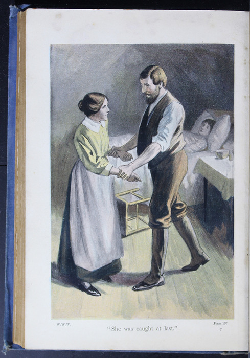 "Illustration on Page 196b of the [1910] Collins' Clear-Type Press ""The Challenge Series"" Reprint Depicting Mr. Van Brunt Catching Nancy at Ellen's Sickbed"