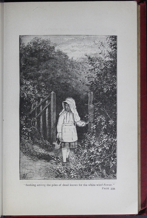 Illustration on Page 338a of the [1904] Hutchinson & Co. Reprint Depicting Ellen in the Woods