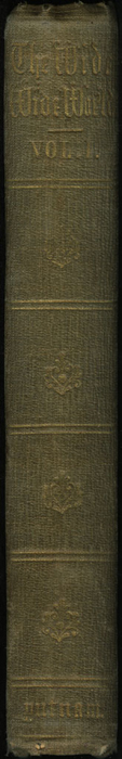 Spine of Volume 1 of the 1851 George P. Putnam First Edition