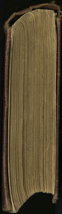 Head of the [1878] Milner & Co. Reprint, Version 1