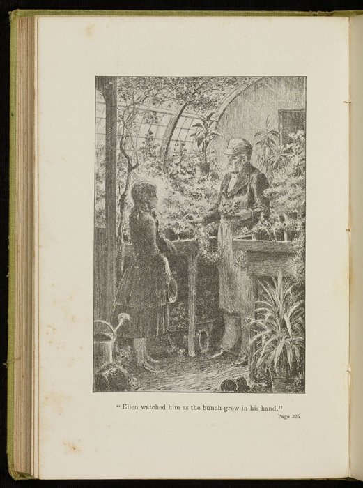Illustration on Page 325 of the 1896 Hodder and Stoughton Reprint Depicting Ellen in the Greenhouse with Mr. Hutchinson