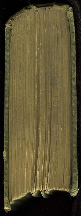 "Head of the [1885] Ward, Lock & Co. ""Home Treasure Library Complete ed."" Reprint, Version 1"