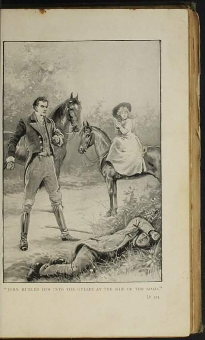 Illustration on Page 322a of the [1896] S.W. Partridge & Co. Reprint Depicting the Horse Whipping Scene