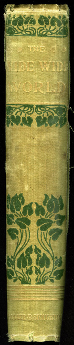 Spine of the 1896 Hodder and Stoughton Reprint