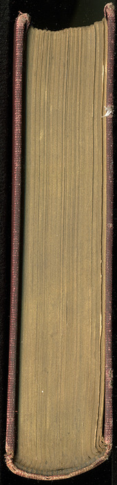 Head of the [1899] Geo. M. Hill Co. Reprint