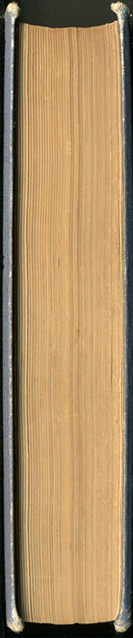"Fore Edge of 1887 James Nisbet & Co. ""New ed. Golden Ladder Series"" Reprint"