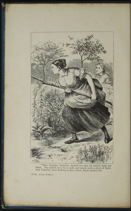 Frontispiece to the [1899] George Routledge & Sons, Ltd. Reprint, Version 1 Depicting Aunt Fortune Chasing Timothy the Bull
