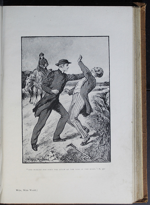 Illustration on Page 328a of the [1896] The Walter Scott Publishing Co. Ltd. Reprint Depicting the Horse Whipping Scene