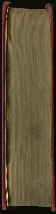 Fore Edge of [1891] James Nisbet & Co. Reprint