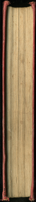 "Fore Edge of the [1903] W.P. Nimmo, Hay & Mitchell ""Complete Edition"" Reprint"