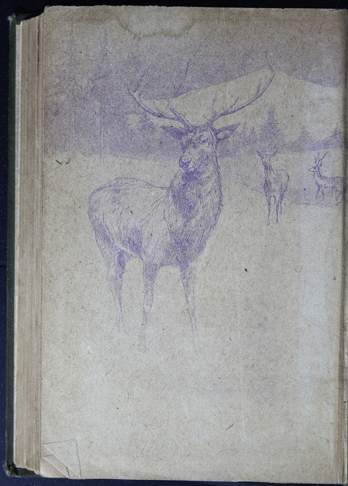 Verso of Back Flyleaf of the [1883] John F Shaw & Co. Reprint