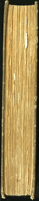 Fore Edge of the [1907] Grosset & Dunlap Reprint, Version 1