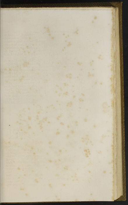 Recto of Illustration on Page 332b of the 1853 G. Routledge and Co. Reprint