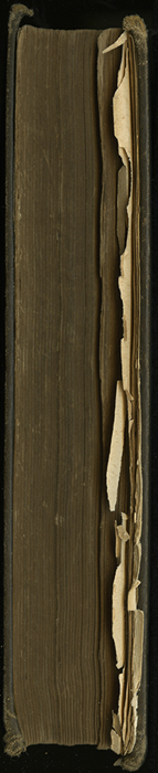 """Fore Edge of [1891] James Nisbet & Co. """"New ed."""" Reprint"""