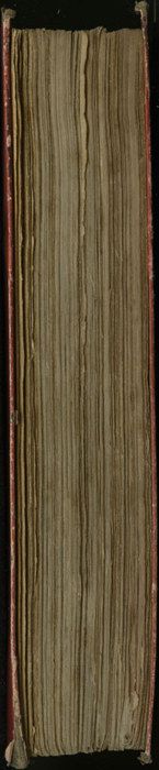 "Fore Edge of the 1853 T. Nelson & Sons ""Nelson's Library for Travellers and the Fireside"" Reprint"