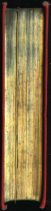 "Fore Edge of the [1896] Walter Scott, Ltd. ""Complete Ed."" Reprint"