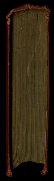 """Head of the [1877] Ward, Lock & Co. """"Good Tone Library, Complete Edition"""" Reprint"""