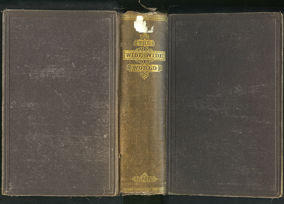"Full Cover of the 1869 J.B. Lippincott & Co. ""New Edition"" Reprint"