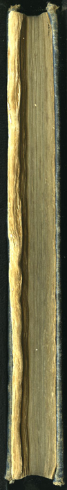 "Fore Edge of the [1904] Ward, Lock, & Co., Ltd. ""Complete Edition"" Reprint"