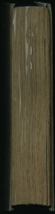 "Fore Edge of the 1853 H. G. Bohn ""Standard Library"" Reprint"