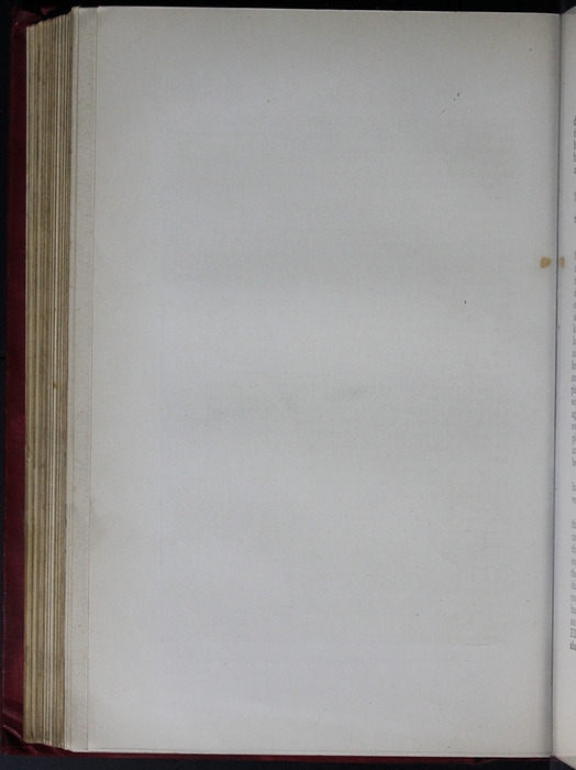 Verso of Illustration on Page 242b of the [1904] Hutchinson & Co. Reprint