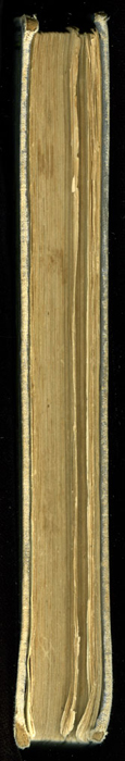"Fore Edge of the [1884] Ward, Lock & Co. ""Lily Series, Complete Edition"" Reprint"
