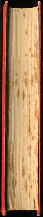 """Fore Edge of the 1879 James Nisbet & Co. """"Golden Ladder Series"""" Reprint"""