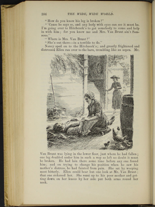 "Illustration on Page 386 of the 1892 J.B. Lippincott Co. ""New Edition"" Reprint Depicting Mr. Van Brunt's Accident"