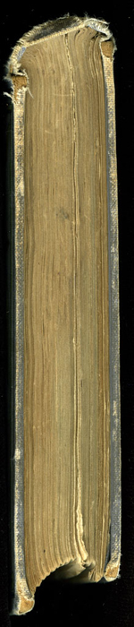 """Head of the [1884] Ward, Lock & Co. """"Lily Series, Complete Edition"""" Reprint"""