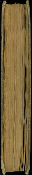 Fore Edge of Volume 2 of the 1851 George P. Putnam First Edition<br /><br /> <br /><br />