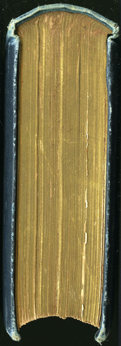 Head of the 1888 J.B. Lippincott & Co. Edition