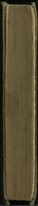 """Fore Edge of the [1895] William L. Allison Co. """"Allison's New Standard Library"""" Reprint"""